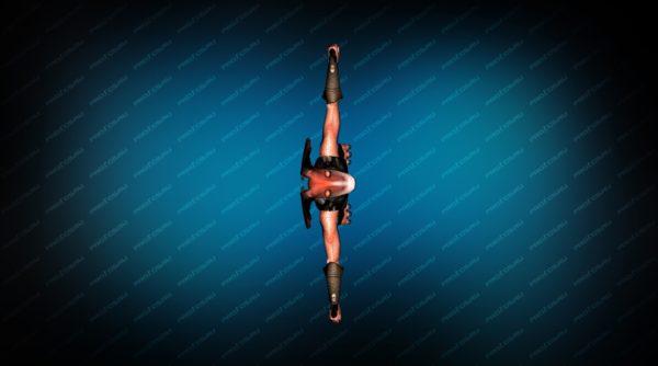 Модель игрока «Джа-Джа Бинкс» Вид сверху